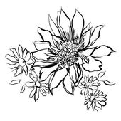 Flowers, painted black outline on the white background — Stock Photo