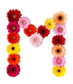Une lettre de fleur — Photo