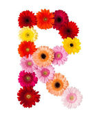 A flower letter — Stock Photo