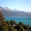 Patagonian Landscape — Stock Photo