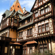 Half Timbered House — Stock Photo #43711445
