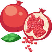 Illustration Pomegranate Fruit — Stock Vector