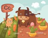Alphabet.C letter — Stock Vector