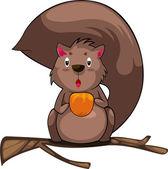 Cartoon eekhoorn — Stockvector