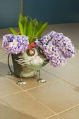 Funny cat flowerpot — Stock Photo