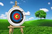 Three arrows on target — Stockfoto