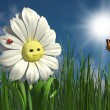 Happy daisy — Stock Photo