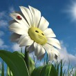 Happy daisy — Stock Photo #43434469