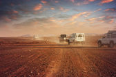 Cars in the desert at sunset — Stock Photo