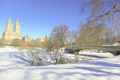 Central park och båge bron i snön, manhattan new york — Stockfoto