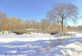 Bow Bridge and Frozen Pond, Central Park, Manhattan New York — Stok fotoğraf