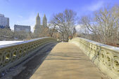 Central Park and the Bow Bridge in the Snow, Manhattan New York — Stock Photo