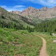 Hiking Trail in the Rocky Mountains — Stock Photo #43451777