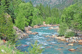 """""""A River Runs Through it"""" - Pristine Fly fishing water in the mountains — Stock Photo"""