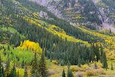 Fallen sie farben in den felsigen bergen — Stockfoto