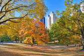 Autumn Color: Fall Foliage in Central Park, Manhattan New York — Stock Photo
