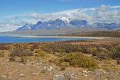 Parque nacional torres chile del paine, patagonia — Foto de Stock