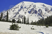 Mount Rainier, Cascade Mountains, Washington State, USA — Stock Photo