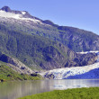 Mendenhall glacier, tongass national forest, alaska — Zdjęcie stockowe #51078383
