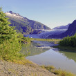 Wildnis-Landschaft in alaska — Stockfoto #51078413