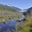 Wildnis-Landschaft in alaska — Stockfoto #51078439