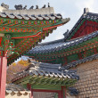 Traditional Architecture Showing Colorful Roof Detail in Seoul, South Korea — Stock Photo #51202089