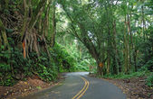 Driving on the Road to Hana, Maui, Hawaii — Stock Photo