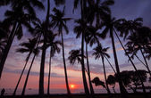 Sunset with red sky in Hawaii — Stock Photo