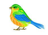 Litle kuş — Stok Vektör