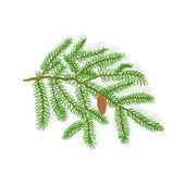 Spruce Christmas tree vector illustration — Stock Vector