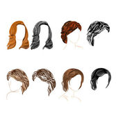 Hair natural and silhouette Vector — Stock Vector