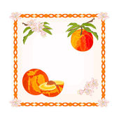 Button Peach with leaves and flowers vector — Stock Vector