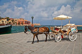 The horse on the sea-front of Chania. Greece. Crete — Stock Photo