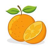 Frutas naranjas — Vector de stock