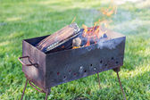 Firewood burning in the brazier — Stock Photo