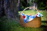 Korg för picknick — Stockfoto