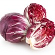 Постер, плакат: Red cabbage radicchio