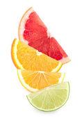 Färgglada citrus skivor — Stockfoto