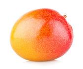 Mango — Stockfoto