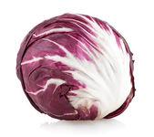Red cabbage radicchio — Stock Photo