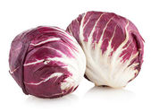 Red cabbage radicchio — Stock Photo