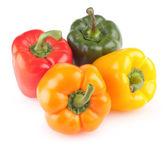 Färgglada paprika — Stockfoto