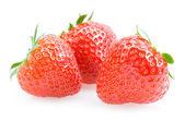 Strawberries — Stock Photo
