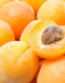Apricots background — Stock Photo