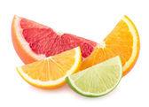 Colorful citrus slices — Stock Photo
