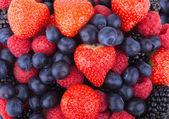 Berry background — Stock Photo