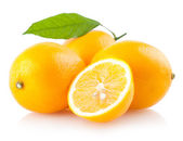 Ripe lemons — Stock Photo