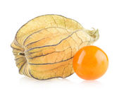 Ripe physalis — Stock Photo