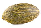 Ripe melon — Stock Photo
