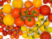 Tomatoes scattering — Stock Photo